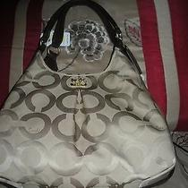 Coach Khaki/mahogany Lizard Purse Nwt Photo