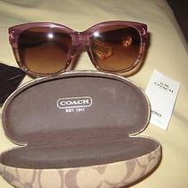 Coach Ladies Hc8086f L543 Sienna Sunglasses 518613 Berry Horn Brand New Photo