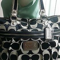 Coach Large Handbag  Photo