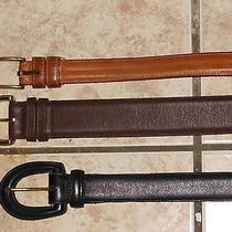 Coach Leather Belts Lot Size 34 Medium Large Photo