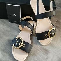 Coach Leather Black and Tan Sandals Women's Size 10 New With Box  Photo