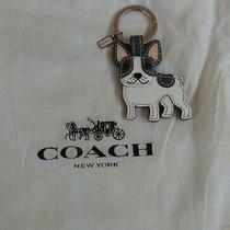 Coach Leather French Bulldog Key Ring/fob Photo