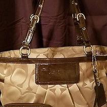 Coach Leatherware 13025 Ashley Sateen Jacquard/patent Khaki/mohagany W/wristlet Photo