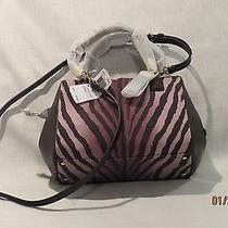 Coach Madison Mini Satchel in Zebra Print Photo