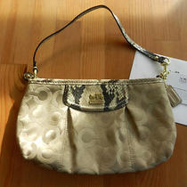 Coach Madison Op Art Large Wristlet - Khaki Natural 46638 Python Photo