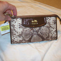 Coach Madison Python Khaki Multi Zippy Wristlet Wallet 48187 Nwt Photo