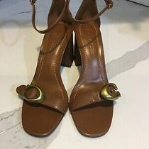 Coach Maya Heel Sandals With Signature Buckle in Lion Leath Size 7.5  G2399 Photo