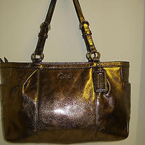 Coach Metallic Pewter Leather Tote Side Pockets Shoulder Bag Carry All F17721 Photo