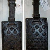Coach Molly Embossed Op Art Leather Luggage Tag 60652 Mahogany Brown Nwt Unisex Photo
