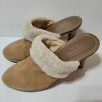 Coach Mules Shoes Slip on Ivory Shearling Collar Size 8.5 Italy Kacie  Photo