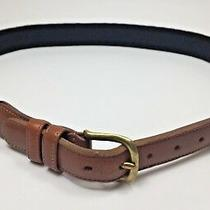 Coach Natural Linen Leather Solid Brass Buckle Belt Mens Size 28 Photo