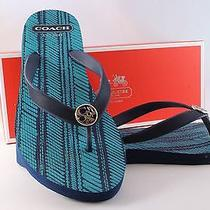 Coach Navy Blue and Turquoise  Allesa Flip Flops Summer   Photo