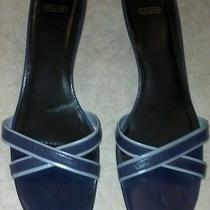 Coach Navy Blue Trimmed in Light Blue Leather Sandals - Size 10b Photo