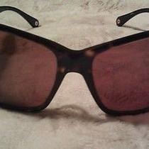 Coach Nina S494 Sunglasses Photo