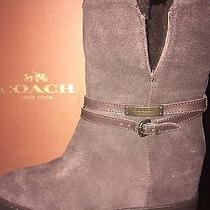 Coach Norell Suede Boots  Photo