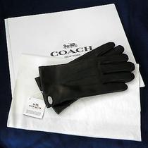 Coach Nwt F85876 - Womens Black Sheepskin Gloves Size 8 Coach Gift Box/tissue Photo