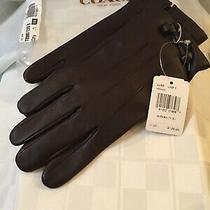 Coach Nwt Women's Tea Rose Bow Leather Glove Oxblood 135 Sz 8 F20887  Photo