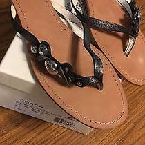 Coach Oceana Flip Flops New in Box 11m Photo