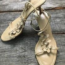 Coach P 493 Kelly 9.5b Nude Studded Floral Kitten Heel Sandals T Strap Photo