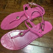 Coach Pier Jelly Pvc Signature C-Logo Thong Sandal Flat Magenta Sz 9 Pre-Owned Photo