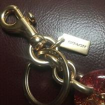 Coach Pride Heart Key Ring Photo