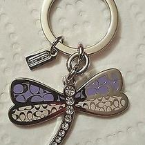 Coach Purple Dragonfly Keychain Photo