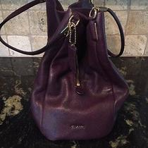 Coach Purple Leather Handbag Photo