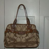 Coach Pursebeautiful Photo