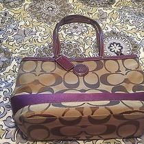 Coach Purse Brown With Purple Photo
