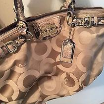 Coach Purse Tan and Beige / Small and Handy  Photo