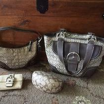 Coach Purse Wallet and Sunglasses Case Lot of 4 Items Photo