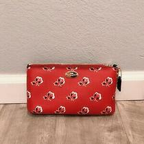 Coach Quinn Bramble Rose Floral Red Crossbody Bag Slim Zip Chain New 165 Photo