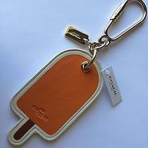 Coach Rare Leather Orange Popsicle Key Fob Purse Charm 65868  Photo