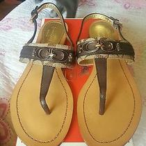 Coach Sandals 8.5 Brand New. Original Photo