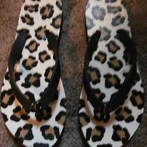 Coach Sandals Animal Print Size 6 Animal Print-White Tan & Black W/black Straps Photo