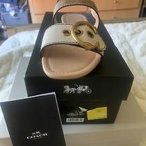 Coach Sandals Jen New Size 8 Never Wore Box and Card Photo