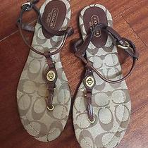 Coach Sandals Size 6.5 Photo