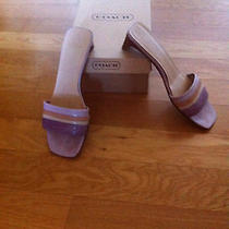 Coach Sandals Size 7  Photo