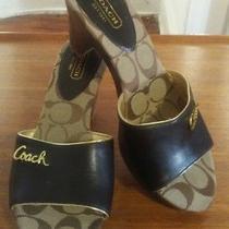 Coach Sandals Size 8  Photo