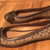 Coach Sandra Flat Size 9 Great Ballet Flat for Summer / Anytime Photo