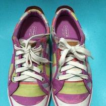 Coach Shoes Barrett Size 7b Flat Geometric Medium  Multicolor and Leatherware Photo