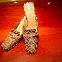 Coach Shoes Size 7 Photo