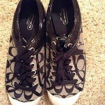 Coach Shoes Size 8 Photo