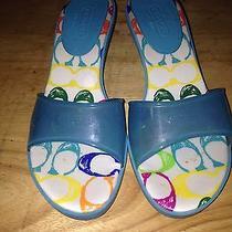 Coach Shoes Size 8 Photo