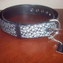 Coach Signature C Black/white Ladies Belt 3977 Size Extra Large Xl - Euc Photo