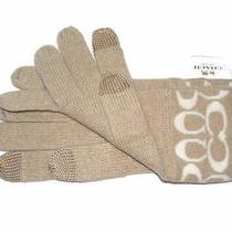 Coach Signature Cashmere Wool Knit Blend Tech Gloves Camel / White 86026 Nwt Photo