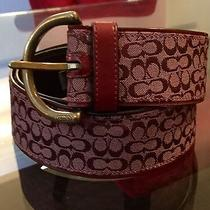 Coach Signature Maroon Logo Fabric Belt With Leather Trim Size Small Photo