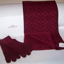 Coach Signature Scarf and Gloves Bright Berry New Angora Cashmere Blend 2pc Photo