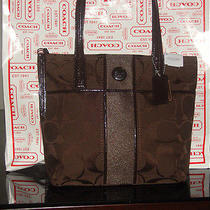 Coach Signature Stripe Tote Bag Purse Mahogany F25771 Photo