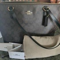 Coach Signature Zip Tote F29208 New With Tags Brown/black Extras Mint Photo